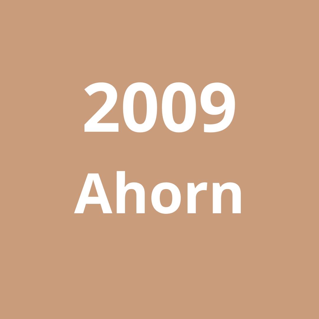 2009 Ahorn