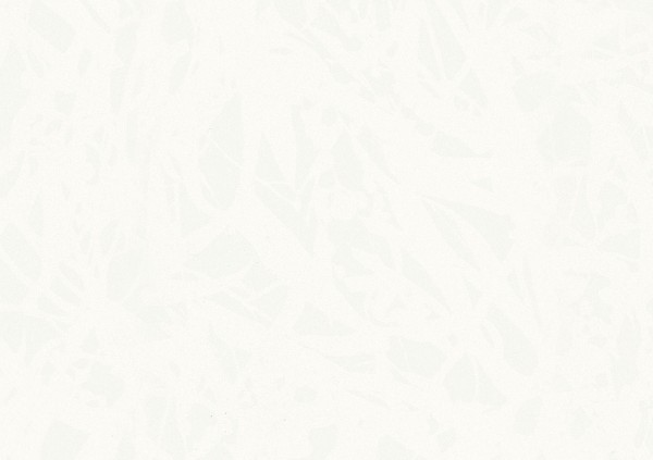 Dekorpaneele Terra DP 250 Duo Gloss White 4089